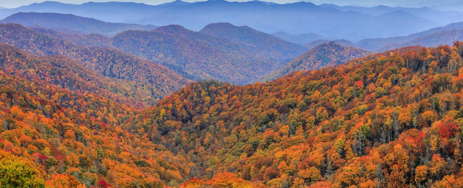blueridgemountainsnc-