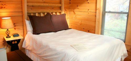 Rocky Broad River Cabin Bedroom 2