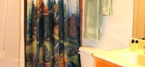 Rocky Broad River Cabin Bathroom