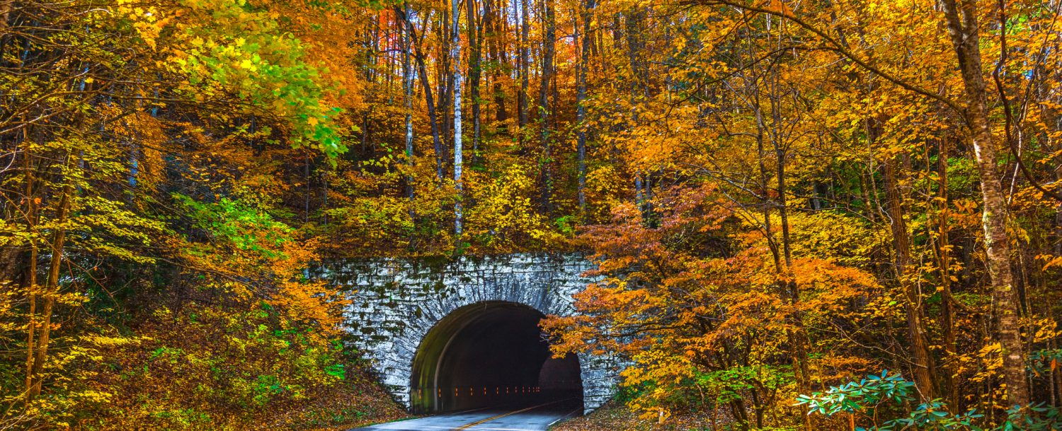 Blue Ridge Parkway Tunnel near Asheville North Carolina during Fall: North Carolina fall colors.