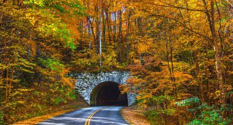 Blue Ridge Parkway Tunnel near Asheville North Carolina during Fall: North Carolina fall colors.