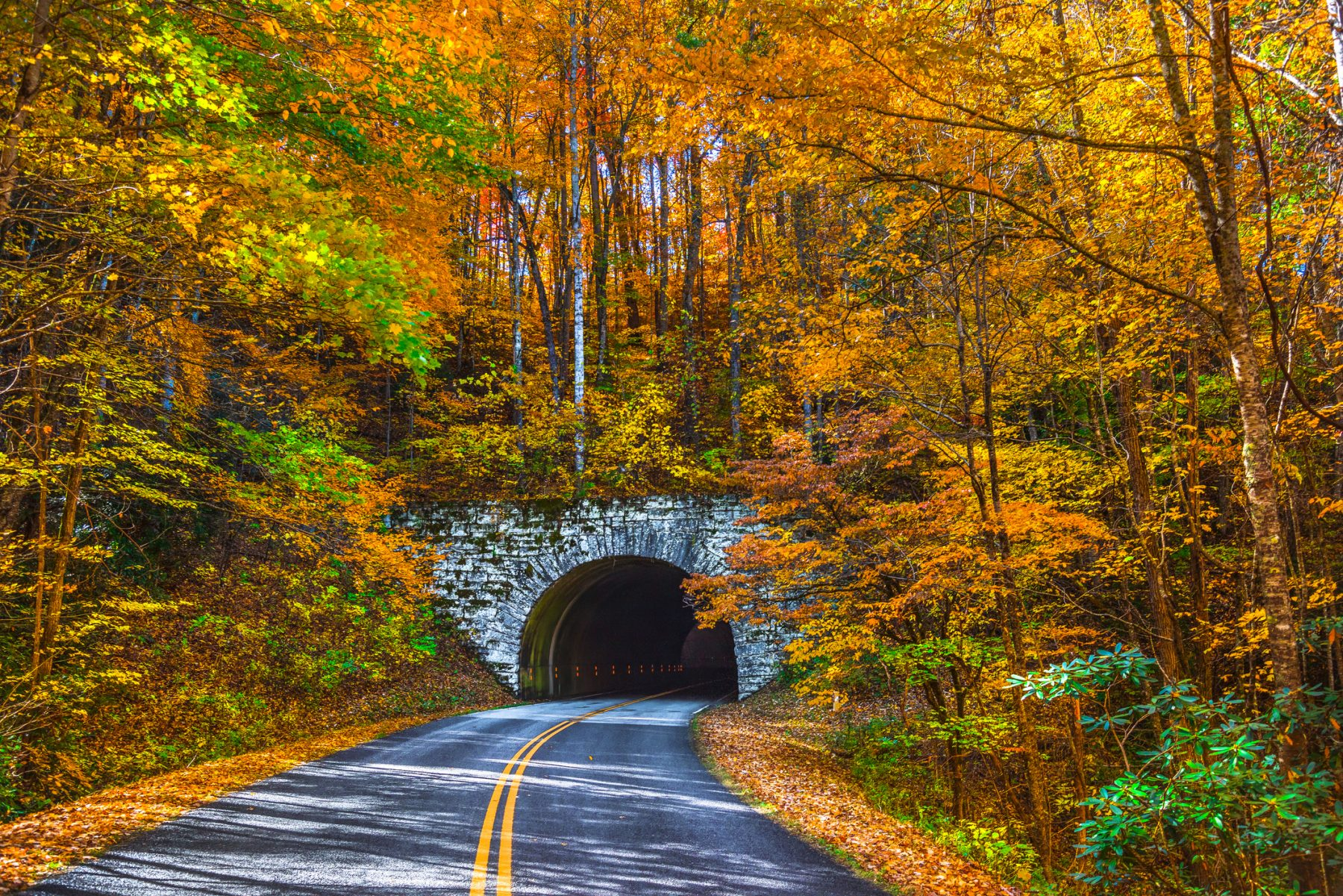 3 Of The Best Places To Admire North Carolina S Fall