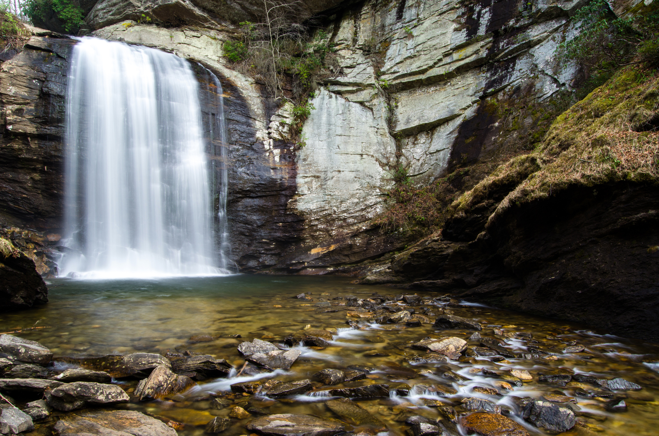 Looking Glass Falls at Pisgah National Forest in Brevard, NC. Read our blog on Looking Glass Falls to learn more about this special waterfall!